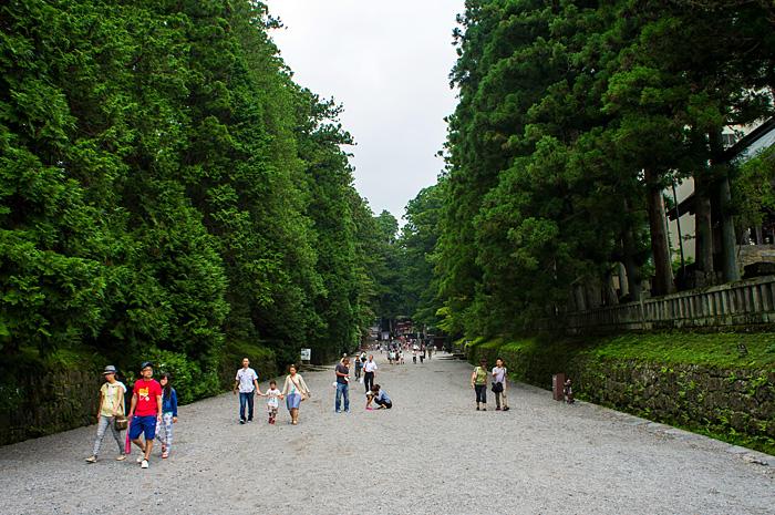 Nikko01.jpg