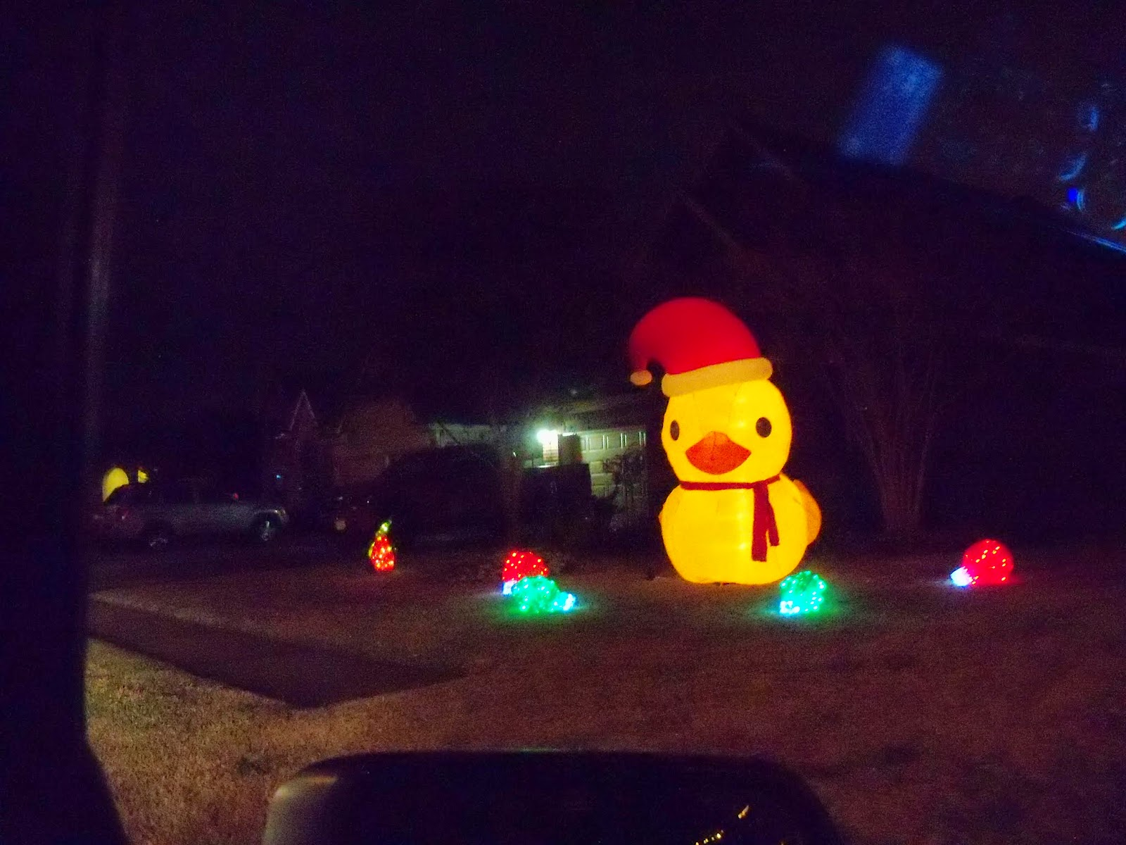 Christmastime - 116_6533.JPG