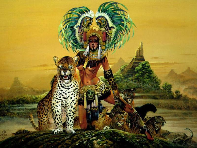 Knight Maya, Warriors