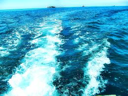 explore-pulau-harapan-08-09-06-2013-009