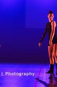Han Balk Voorster Dansdag 2016-4946-2.jpg