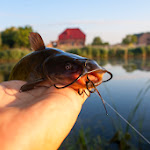 20140715_Fishing_Shpaniv_006.jpg