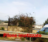 pilone 2