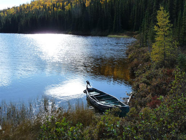 Northeast bay of Lac Fourchette. The electric motor on the canoe essentially made no noise at all.