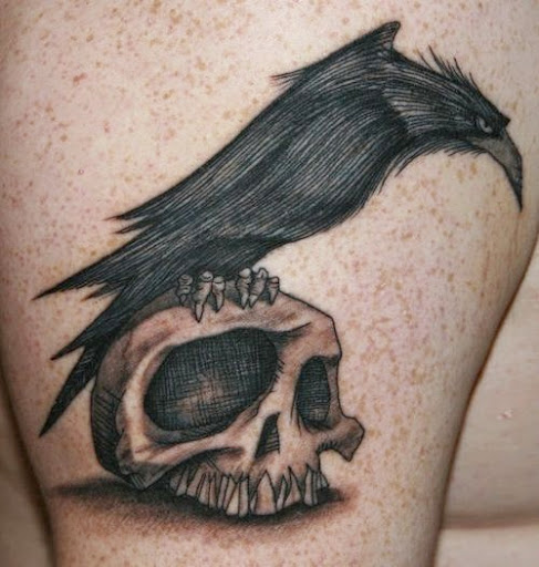 crow sitting on a skull tattoo design