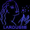 Dictionnaire Larousse en ligne