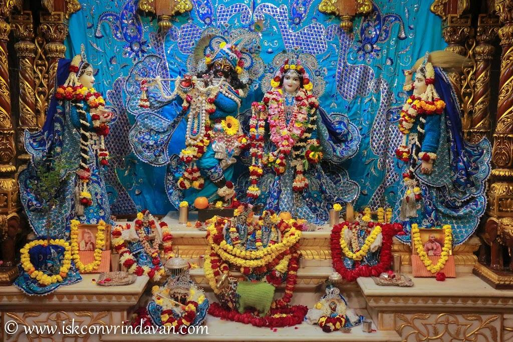 ISKCON Vrindavan Deity Darshan 10 Jan 2017 (5)