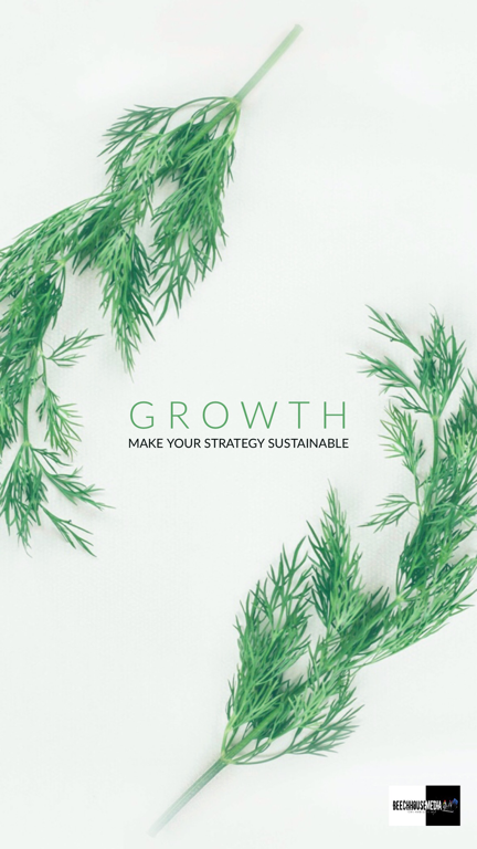 make your growth strategy sustainable