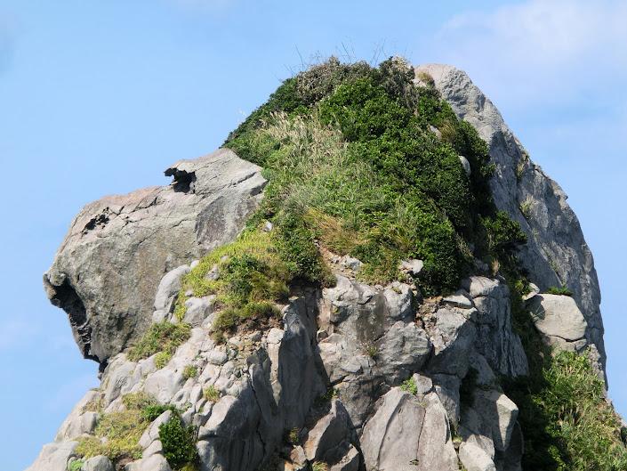 猿岩のどアップ