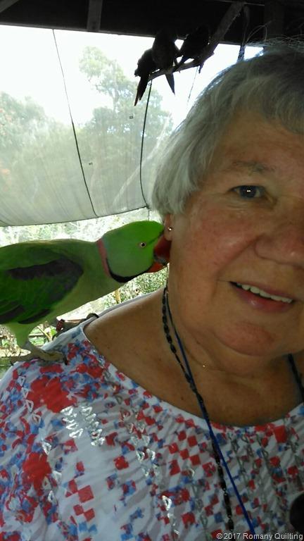 [Parrot-on-Jenny8]