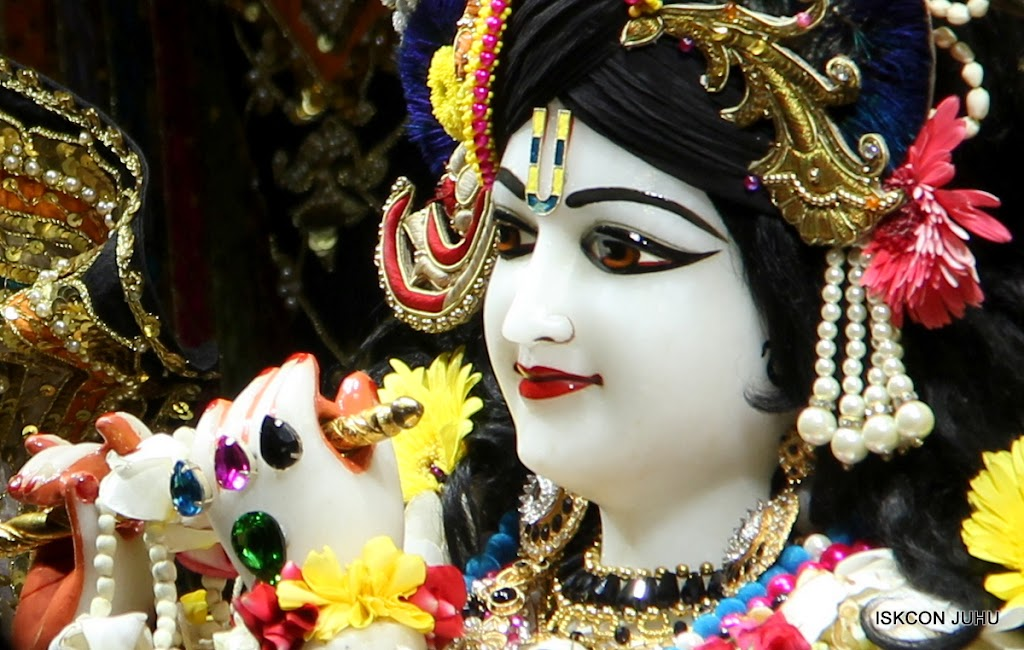 ISKCON Juhu Sringar Deity Darshan on 28th May 2016 (26)