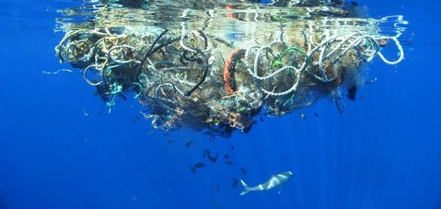 Rác thải đại dương thường rất khó phân hủy.