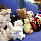 We have all manner of cuddly friends waiting for you in the store!