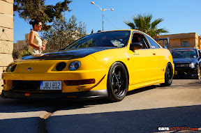 Yellow Teg