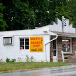 TheresaMottle-The Little Barber Shop.jpg