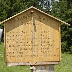 Wanderung Tschafon 23.06.17-8996.jpg