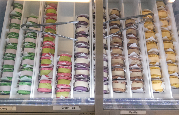 overhead photo of the ice cream sandwiches in a case
