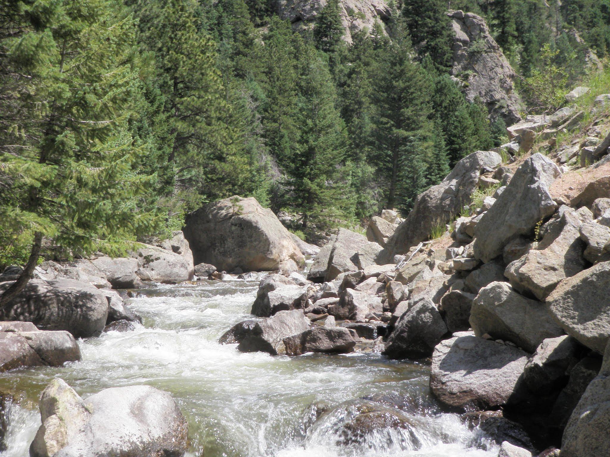 Boulder creek 07 27 2015 dave weller 39 s fly fishing blog for Boulder creek fishing