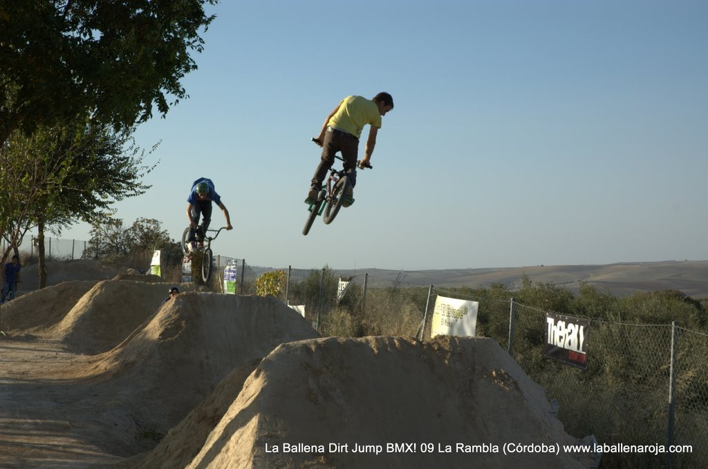 Ballena Dirt Jump BMX 2009 - BMX_09_0093.jpg