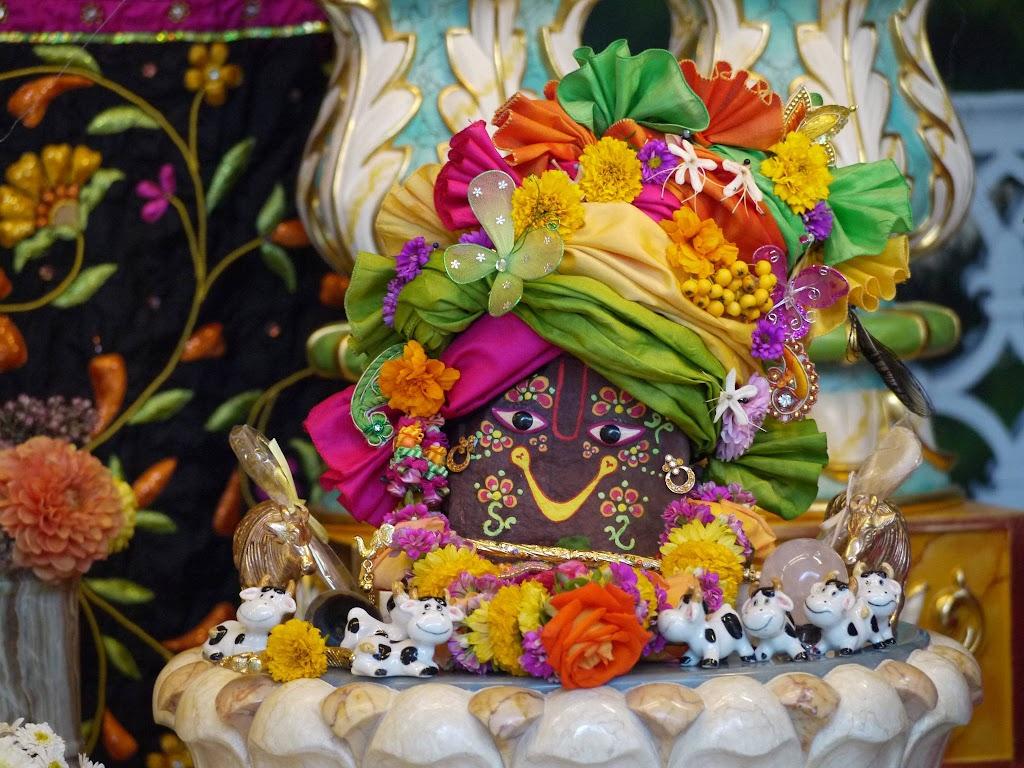 ISKCON Hungary Deity Darshan 20 Sep 2016 (8)