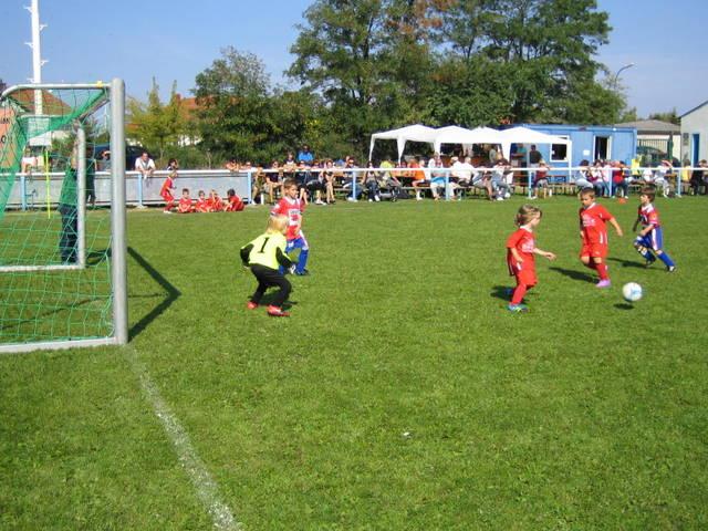 Turnaj Neudorf, Rakúsko - 24.9.2011%2B-%2BCSFA%2B-%2BPARTNERI%2B%252B%2BNEUDORF%2B064.JPG