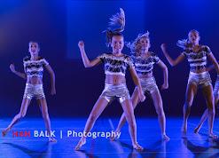 Han Balk Voorster Dansdag 2016-3645.jpg