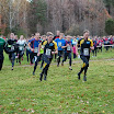 XC-race 2013 - Rimfoto-7726.jpg