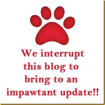 Impawtant update