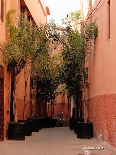 Marrocos 2012 - O regresso! - Página 4 DSC05072