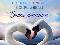 buona domenica immagine con fase amore Il tempo dissolve il superfluo e conserva l'essenziale perdonne.jpg