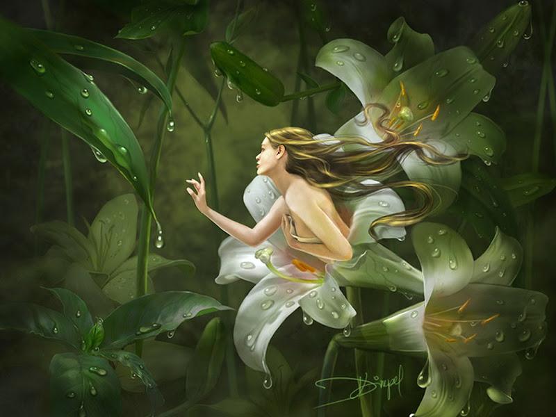 Flower Symphony, Mystery