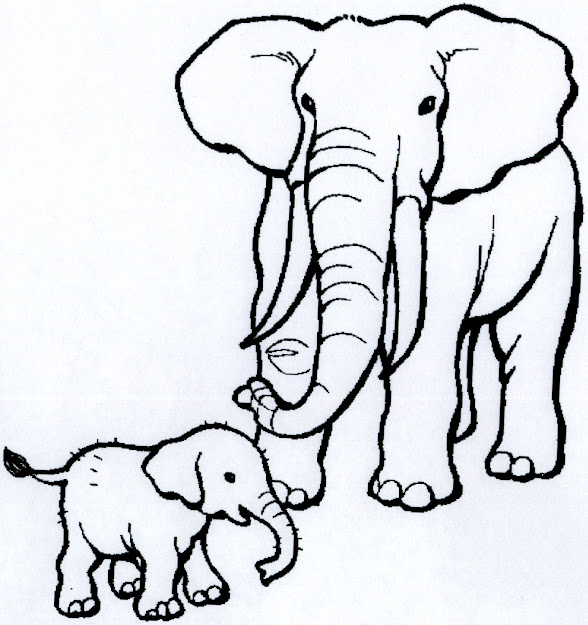 African Animals Coloring Pages  Click On Each Image To Get Downloadable  Pages That You Can