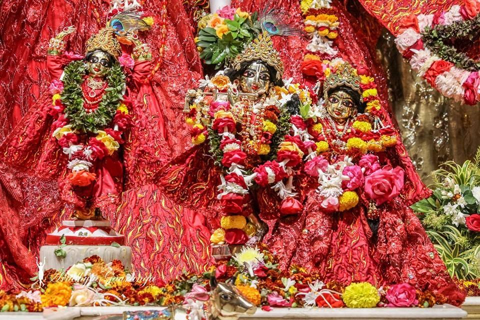 ISKCON Mayapur Deity Darshan 06 Jan 2015 (5)