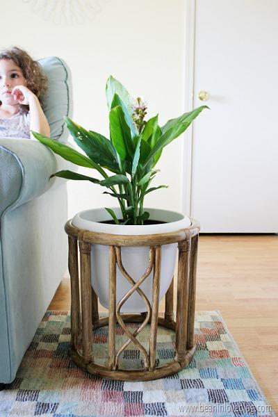 planter (4)