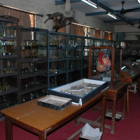 Zoology Musum-2.jpg