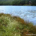 12_giornaliere n. 13 lagosanto - lagosanto 15-9 (lagosanto modenese e rifugio marchetti).JPG