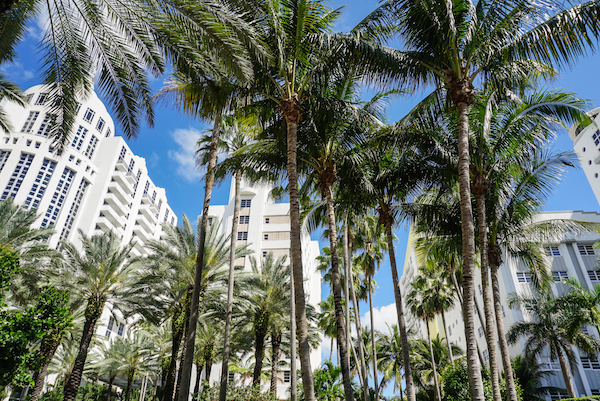 photo 201503-Miami-SouthBeach-13_zpscr39dyvn.jpg