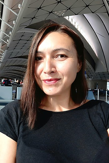 BugetChina06.jpg
