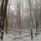 Зимний Вантит 107.jpg