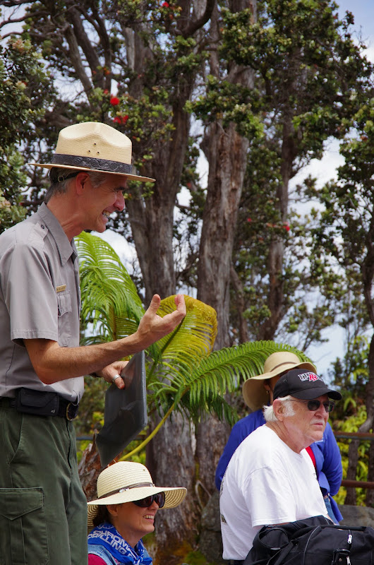 06-20-13 Hawaii Volcanoes National Park - IMGP7836.JPG