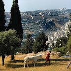 Jeruzalem, 2012-05