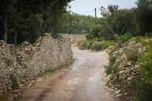Korsyka 2015 (200 of 268).jpg