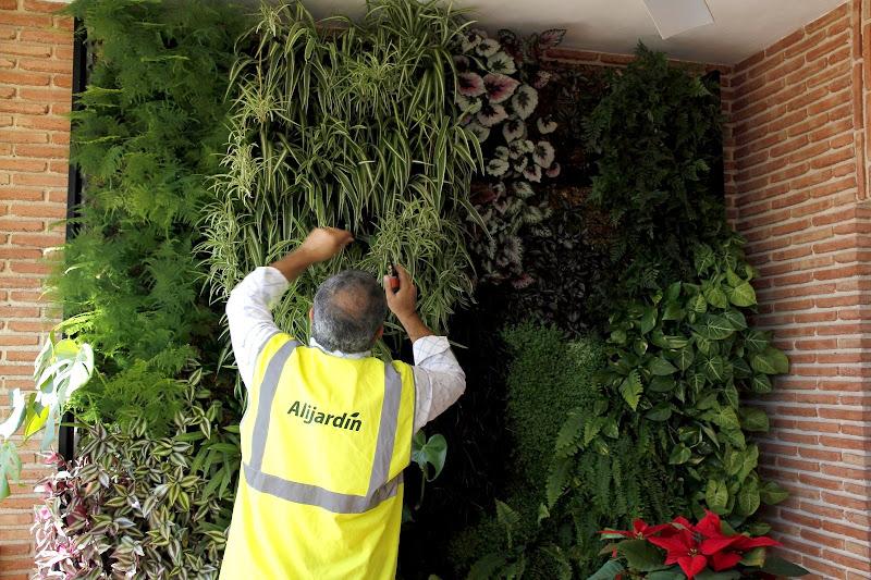 Mantenimiento de jardines verticales jardín vertical jardines verticales mantenimiento mantenimientos podas tratamientos