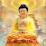 Sinh VN's profile photo
