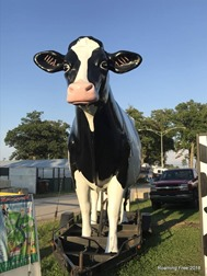 Giant Dairy Cow