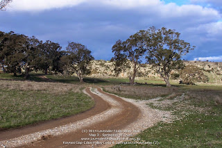 Keynes Gap-Eden Valley Loop & Springton to Keyneton (2)
