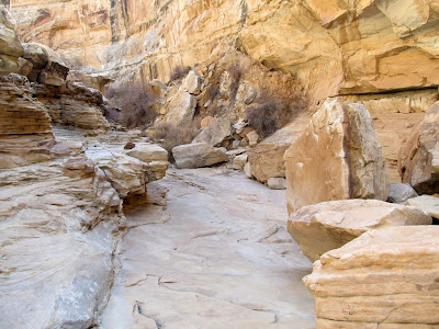 Side canyon leading out of Old Woman Wash