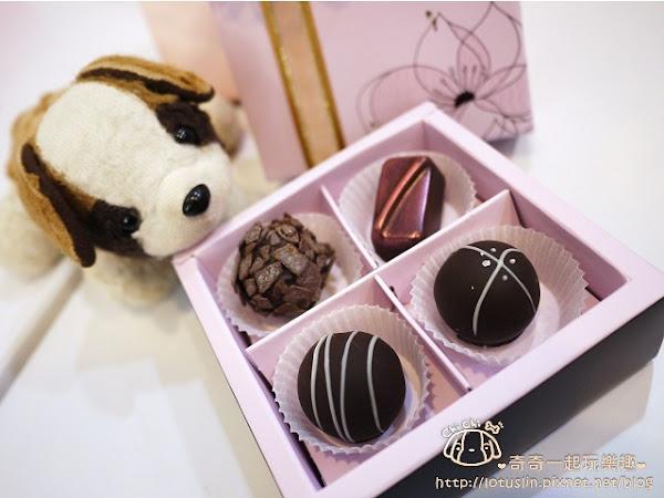 華侖婷娜手工巧克力