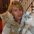 Nevanlinna <b>Siberian Cattery</b> House - photo