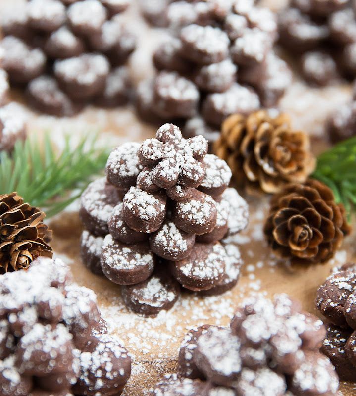 close-up photo of a Chocolate Pinecone Shortbread Cookie